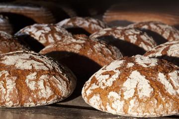 Hercules Bäckerei