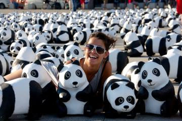 Pandabär Düsseldorf