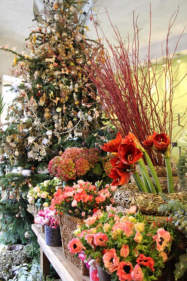 la-terra-weihnachtsbaum-2014-005