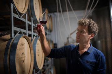 Wein aus Holland